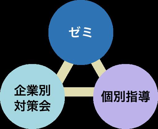 ゼミ、企業別対策会、個別指導の3本柱の図